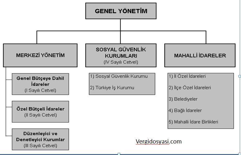 genel yönetim bütçe türleri
