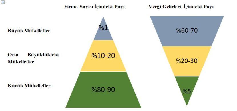 vergidosyasi büyük mükellef vergi gelirleri