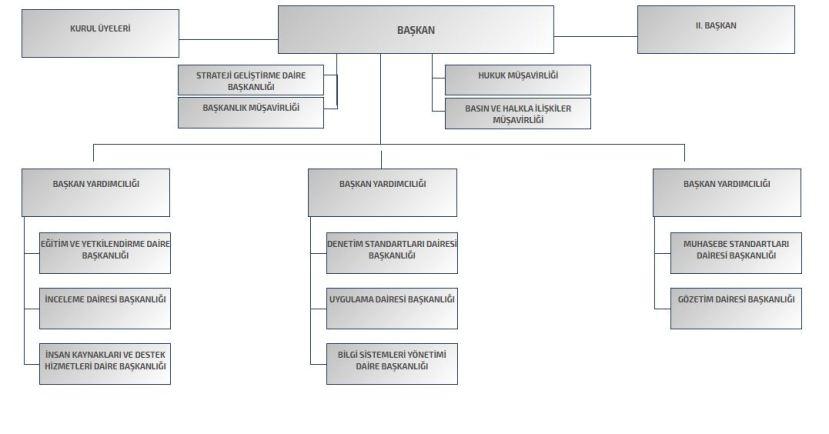 kamu gözetim kurumu KGK teşkilat şeması organizasyon