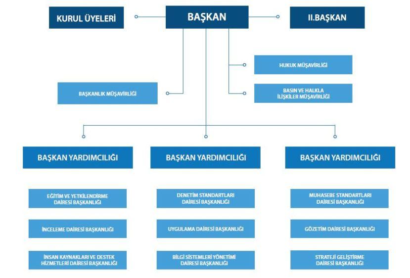 kamu gözetim kurumu teşkilat şeması kgk.JPG