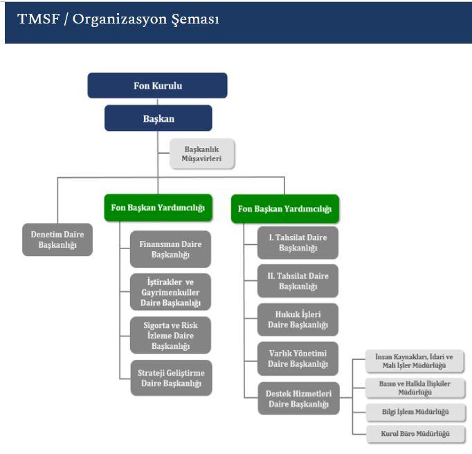 TMSF Organizasyon şeması
