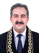 Recai akyel doç dr sayıştay başkanı anayasa mahkemesi üyesi.jpg