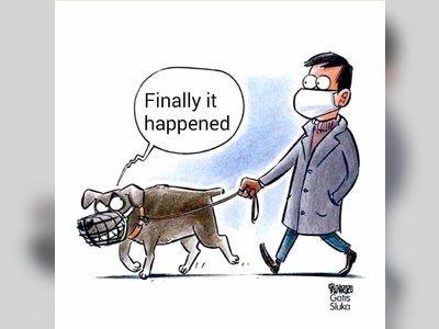 köpek sonunda oldu